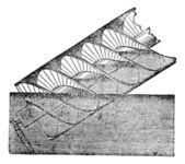 Archimedes screw or Archimedean screw vintage engraving