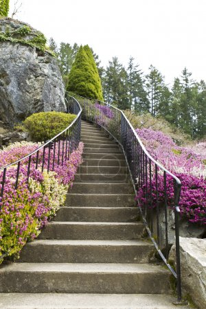 Photo for Staircase surrounded by flowers leading into woods - Royalty Free Image