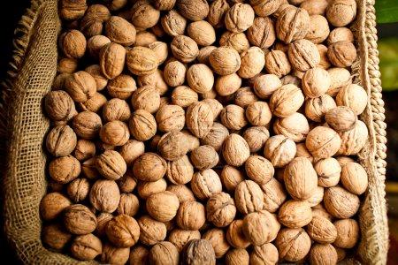 Circassian walnut texture