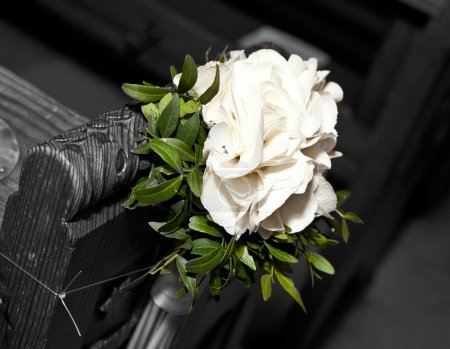 Photo for Beautiful White Gladiolus in the church - wedding - Royalty Free Image