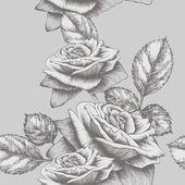 Bezešvé pozadí s růže kvetoucí, ruční kreslení. vektorové ilustrace