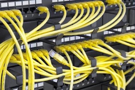 Photo pour Patch panel serveur rack avec cordons jaunes - image libre de droit
