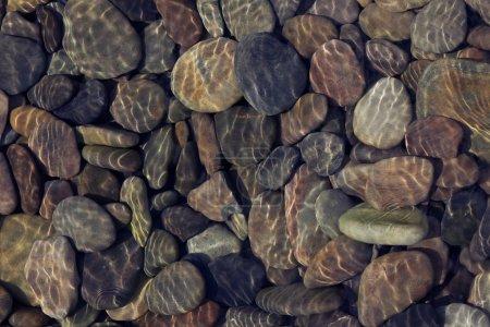 Photo pour Les ondulations réfléchissent la lumière sur de l'eau claire peu profonde qui coule sur des cailloux - image libre de droit