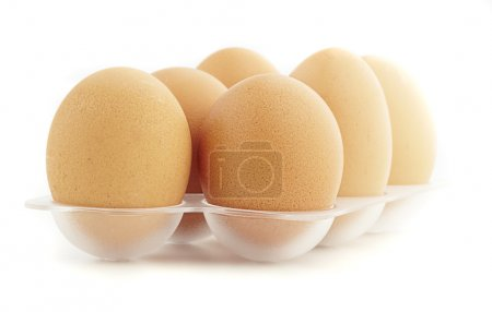 Photo for Eggs isolated on a white background - Royalty Free Image