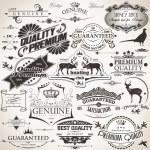 Set of vintage design elements...