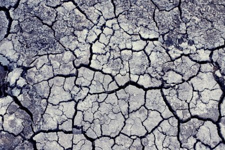 Chaotic cracks on dry land