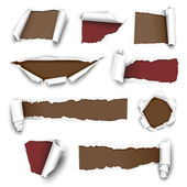 Сollection of torn paper Vector illustration
