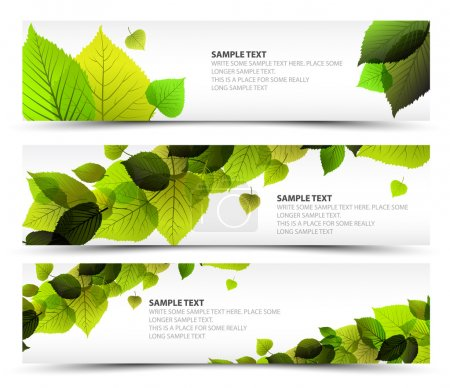 Illustration for Vector Fresh spring horizontal banners with leafs and sample text - Royalty Free Image