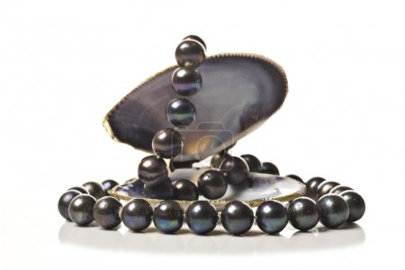Photo for String of black pearls in a sea shell on white - Royalty Free Image
