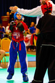 3. Kickboxen Weltmeisterschaft 2011
