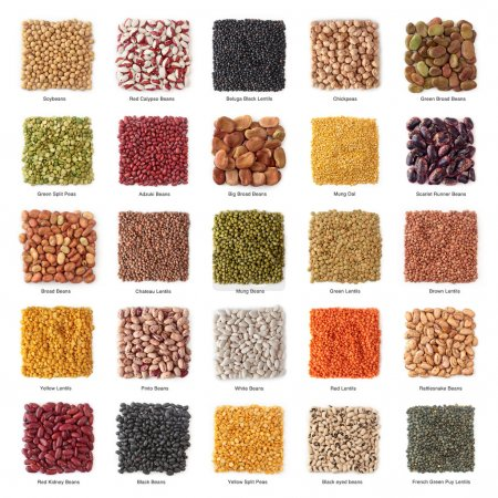 Photo for Legume collection with titles isolated on white background - Royalty Free Image