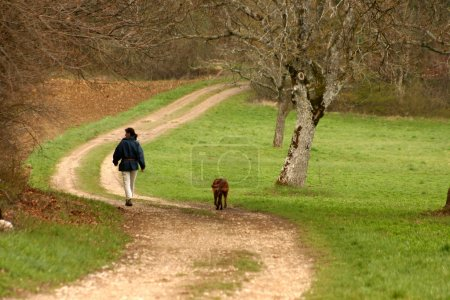 Photo for Autumn in the countryside in alsace france a girl with her dog walking in the countryside - Royalty Free Image