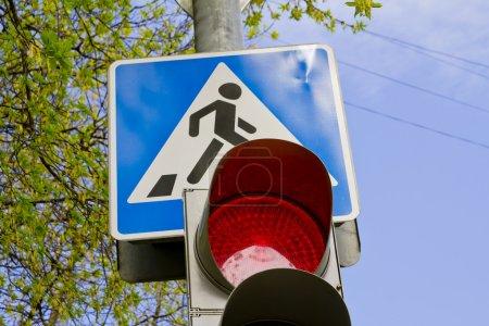 Crosswalk and traffic light