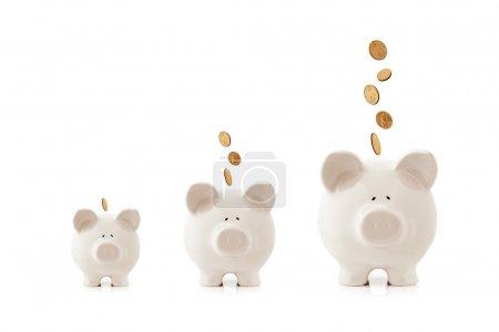 Photo pour Tirelires augmentant dans la taille, avec les pièces de monnaie tombent dans leur. concept d'investissement de plus en plus. - image libre de droit