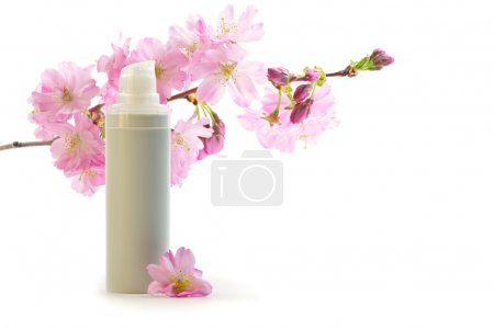 Daily skin care concept: face cream with sakura flowers