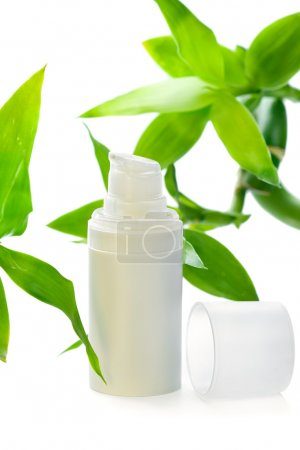 Face cream/serum/lotion/moisturizer among bamboo leaves