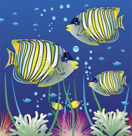 Vector aquarium and colorful fishes
