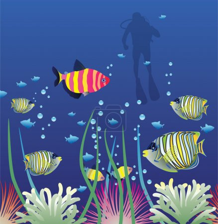 Vector tropical fishes and scuba diver