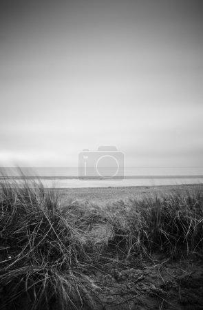 Photo pour Vue à travers les longues dunes de sable d'herbe de maram dehors à la mer au coucher du soleil - image libre de droit