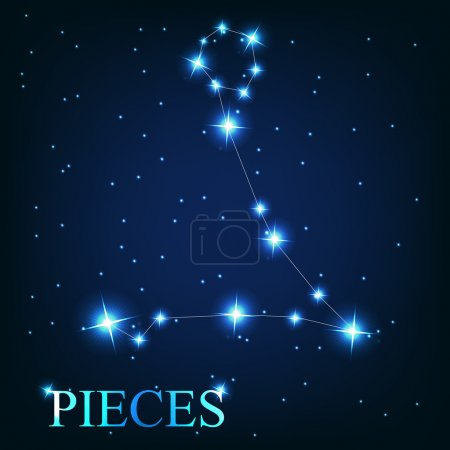 of the pieces zodiac sign of the beautiful bright stars o