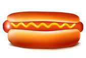 Vector illustration of hot dog with ketchup and mustard