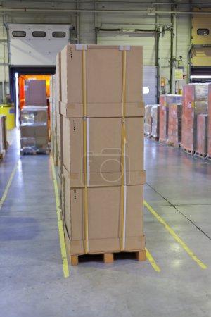 Palleted carton boxes