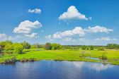 Spring Landscape with flood waters of Narew river, Poland.