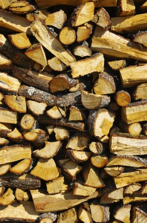 Photo for Detail of piled firewood trunks and planks - Royalty Free Image