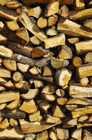 Photo pour Détail des troncs de bois de chauffage sur pieux et planches - image libre de droit