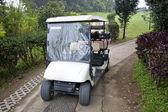 Tropické golfový vozík