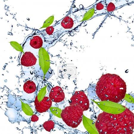 Raspberries splash