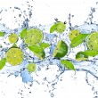 Fresh pieces of limes falling in water splash, iso...