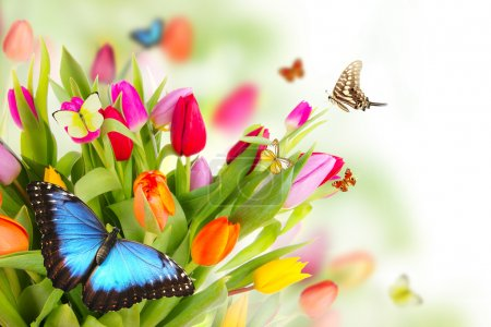 Photo for Bouquet of tulips with butterflies - Royalty Free Image