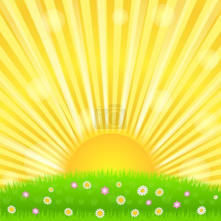 Sunburst and green meadow with flowers, vector eps...