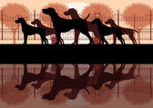 Various dog breeds detailed silhouettes in vintage dog park landscape background illustration vector