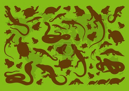 Illustration for Amphibian reptile environmental illustration collection background vector - Royalty Free Image