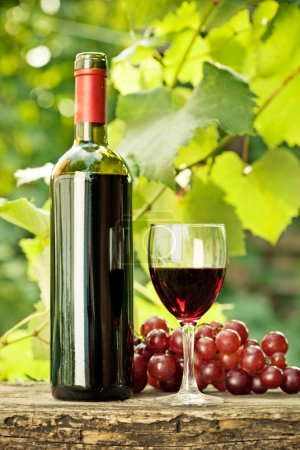 Red wine bottle, glass and bunch of grapes
