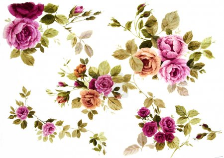 Photo for Color illustration of flowers in watercolor paintings - Royalty Free Image