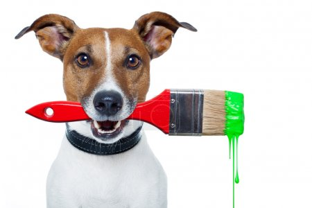 Photo for Dog as a painter with a brush and color - Royalty Free Image