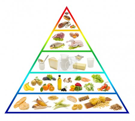 Photo for With fresh food pyramid on white background - Royalty Free Image
