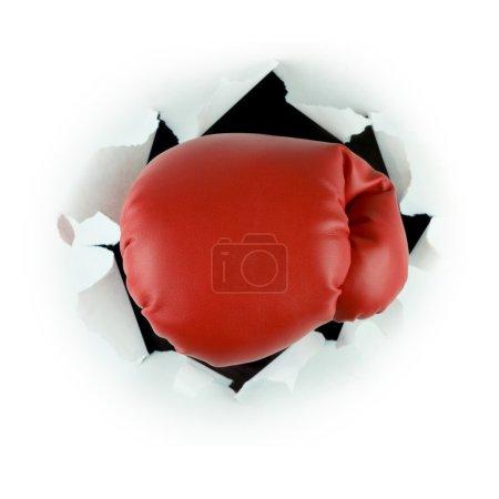 Photo pour Gants de boxe - image libre de droit