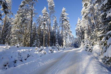 Photo pour Petite route enneigée, paysage hivernal en Suède - image libre de droit