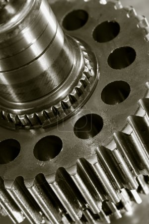 Gears and oil lubricant