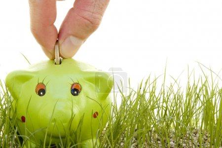 Photo pour Économiser de l'argent sur une tirelire sur l'herbe isolée sur fond blanc - image libre de droit