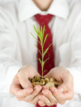 Photo pour Homme d'affaires tenant une plante poussant à partir de pièces d'or - image libre de droit