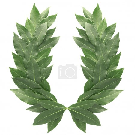 Photo for Laurel wreath isolated on white - Royalty Free Image
