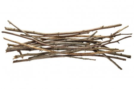 Sticks and twigs, wood bundle isolated on white ba...