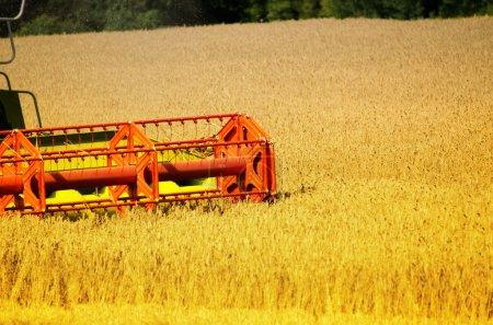 Photo pour La moissonneuse sur le champ de blé - image libre de droit