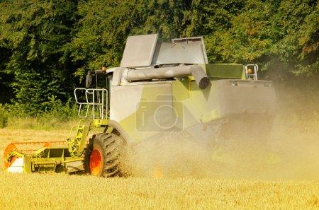 Photo pour La moissonneuse-batteuse récolte le maïs - image libre de droit