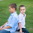 Two brothers sitting back to back on a bench in th...